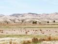 monegros-comarca-monegros8486086284