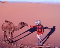 marroc-4
