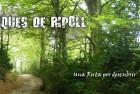 BTT – RCB02 BOSQUES DE RIPOLL