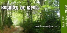 BOSQUES DE RIPOLL – 7 de julio de 2018