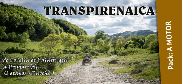transpirenaica-quad-ingravid