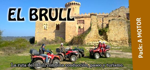 banner_rc11-elbrull
